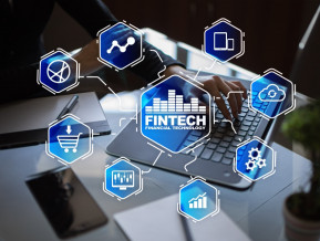Brief overview of the world of FinTech payments. What is the area of activity of the world's leading companies?
