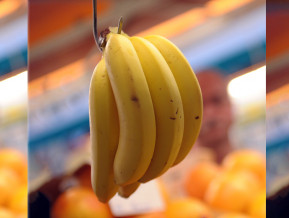 Let's use the money saved on bananas to pay heating and electricity bills